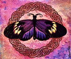 celtic-butterfly_t